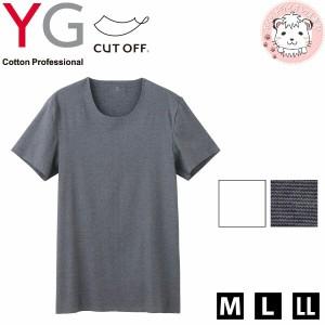 グンゼ YG ワイジー カットオフ クルーネックTシャツ M L LL