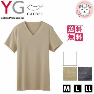 【送料無料】グンゼ YG ワイジー カットオフ VネックTシャツ 6枚セット M L LL
