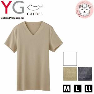 グンゼ YG ワイジー カットオフ VネックTシャツ M L LL