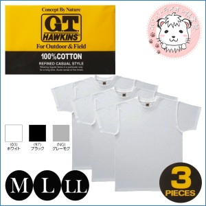 半袖Tシャツ 3枚組 グンゼ  GUNZE G.T.HAWKINS ホーキンス メンズ Tシャツ クルーネックTシャツ M L LL
