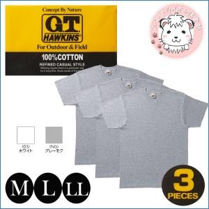 VネックTシャツ 3枚組 グンゼ  GUNZE G.T.HAWKINS ホーキンス メンズ Tシャツ Vネック Tシャツ M L LL