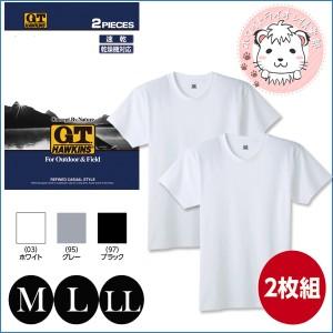 Tシャツ 2枚組 グンゼ GUNZE G.T.HAWKINS ホーキンス メンズ クルーネックTシャツ 速乾タイプ M L LL
