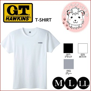 グンゼ G.T.HAWKINS ホーキンス Tシャツ M L LL
