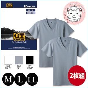 VネックTシャツ 2枚組 グンゼ GUNZE G.T.HAWKINS ホーキンス メンズ Vネック Tシャツ 速乾タイプ M L LL