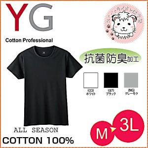 グンゼ YG ワイジー コットン100% 半袖 クルーネックTシャツ M L LL 3L