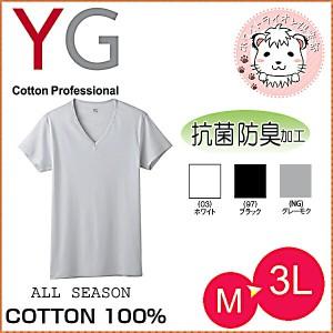 グンゼ YG ワイジー コットン100% 半袖 VネックTシャツ M L LL 3L