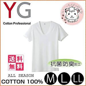 【送料無料】グンゼ YG ワイジー コットン100% 半袖 UネックTシャツ 10枚セット M L LL