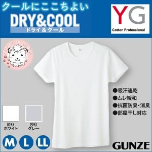 グンゼ YG ワイジー ドライ&クール クルーネックTシャツ M L LL