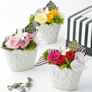 ショコラ クリアケース付き プリザードフラワー ブリザードフラワー プリザーブドフラワー 誕生日 結婚祝い お祝い 出産祝い お花 記念