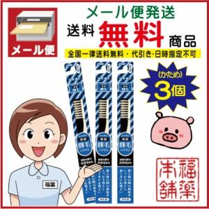 豚毛ライオン 天然毛 歯ブラシ ×3本[ゆうパケット・送料無料]