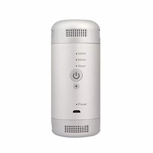 オゾン発生器 低濃度 0.1ppm ミニ空気清浄機 車載オゾン発生器 小型脱臭機 冷蔵庫-10℃対応 オゾン脱臭 99.98%殺菌 USB充電式 内蔵バッテ