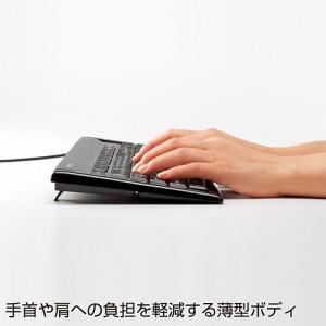 パンタグラフキーボード 日本語109A USB接続 ブラック [SKB-SL15BK]