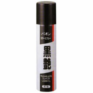 シュワルツコフ ヘンケル パオン カラースプレー黒艶 黒色 ( 白髪用着色料 ) ( 4987234171026 )