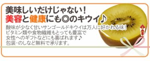 """【送料無料】ゼスプリ ニュージーランド """"サンゴールドキウイ"""" 10玉 約1kg【予約 4月下旬以降】"""