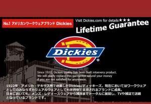 Dickies ディッキーズ メンズ ミリタリー ハーフパンツ ショートパンツ 大きいサイズ ブラック 黒 白 グリーン 迷彩 メール便
