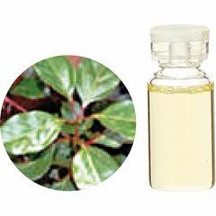 生活の木 TREE OF LIFE エッセンシャルオイル(精油) ラベンサラ 3ml アロマ ESSENNTIAL OIL