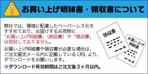 【送料無料】臨場感あふれるPCM録音対応/PCM対応ボールペン型ボイスレコーダー[VR-P004PCM]-べセトジャパン