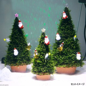 モスツリー用 ガラスオーナメント スマイル雪ダルマ 1個 クリスマス