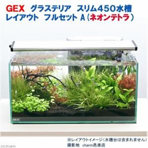 (熱帯魚 水草)GEX グラステリア スリム450 レイアウトフルセットA(ネオンテトラ)水槽セット 本州・四国限定