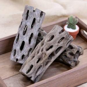 サボテンの骨 棒状 大(直径6×高さ15cm)(お買い得3本セット)