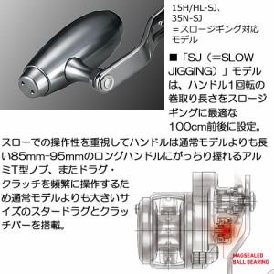 ダイワ 15 ソルティガ 15H-SJ