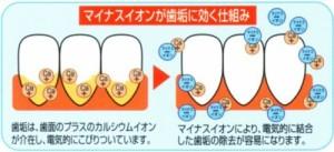 【メール便発送】天然鉱石配合 歯ブラシ歯間ブラシ付(3本セット)