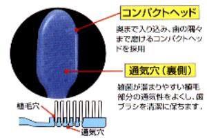 【メール便発送】ホワイト歯ブラシ「水だけのブラッシングでもOK!」3本セット