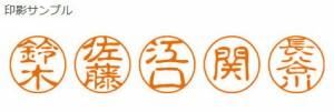 【メール便発送】シヤチハタ ネーム印 ブラック11 既製 0013 青地 XL-11 0013 アオチ