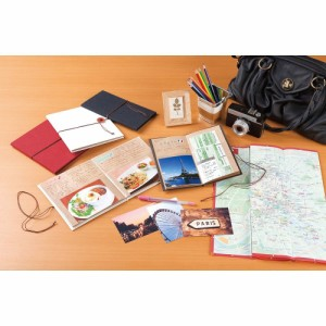(まとめ買い)セキセイ ポケットアルバムノート ルミアン Lサイズ20枚収容 ブルー XP-3820-10 〔3冊セット〕