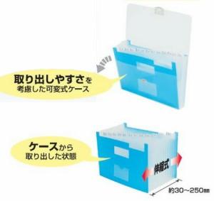 (まとめ買い)ビュートン ドキュメントインケース ブルー A4 13ポケット DIC-A4-13CB 〔6個セット〕