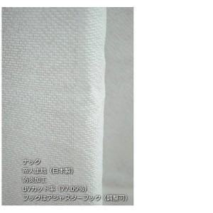 防炎・UVカット レースカーテン 〔2枚組 100×198cm/デザイヤー〕 アイボリー 最大18℃断熱 省エネ バラ柄 帝人 日本製