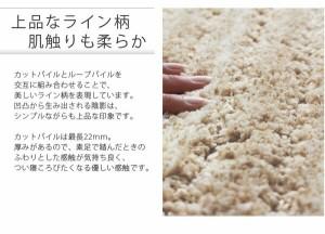 スミノエ ウォームエコ ラグ リブ 140×200cm ブラウン 〔日本製〕