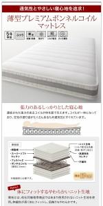 跳ね上げベッド Salomon 〔薄型プレミアムボンネルコイルマット付〕横開き セミシングル レギュラー ダークブラウン