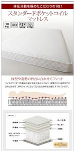 棚付き 収納ベッド 〔ma chatte〕マシェット 〔スタンダードポケットコイルマットレス付き〕 セミダブル 〔マットレス色〕ホワイト