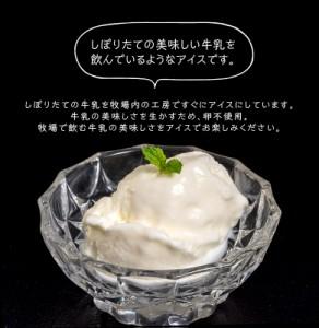 アイス お中元 送料無料 岩瀬牧場 グラスフェッドミルクのアイス 5種10個 ミルク ヨーグルト チーズ ストロベリー ブルーベリー