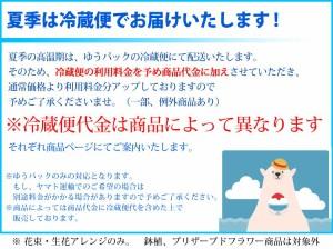 【冷蔵便でお届け】【クイックお届け便*花束】季節のおまかせブーケ¥10,000