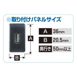 メール便可|エーモン/amon USB接続通信パネル日産車用USB接続ポートをスイッチパネルに延長移植 2313