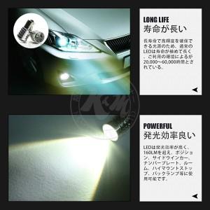 NISSAN リーフ H22.12〜 -(ナンバー灯) 【T10】2個入り ☆CREE LED 5W 送料無料 1ヶ月保証 メール便 K&M