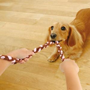 アドメイト ロープTOY チュロス Sサイズ 【犬のおもちゃ/犬用おもちゃ/ロープ】【犬用品/ペット・ペットグッズ/ペット用品/オモチャ】