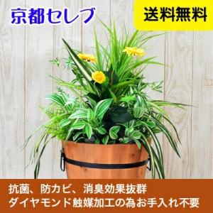 ●代引き不可【wgp-300】 送料無料 人工観葉植物 造花  触媒加工品 オフィスグリーン (オフィスや店舗の装飾に) 99999