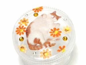 小物入れ 3個セット 猫柄 ピルケース プチケース ペイント小物 花柄 ネコグッズ 猫雑貨 ローズ プチギフト