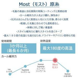 フルウィッグ マジッククール シャコンヌ ロングウェーブ Most(モースト原糸)