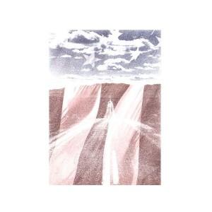 ( 送料無料 ) dial9up 真っ直ぐ伸びる一本道  星条旗を合わせた デザイン ロングスリーブ Tシャツ us flag