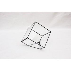 ガラステラリウム CUBE Lサイズ(代引不可)