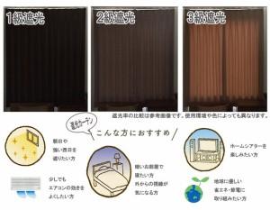 ユニベール遮光ドレープカーテン ニコラ ブラック 幅100×丈200cm 2枚組(代引不可)【送料無料】