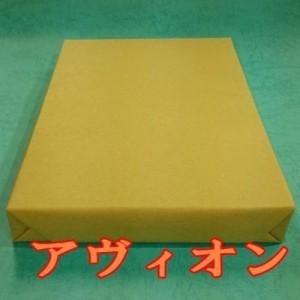 アヴィオンホワイト 100枚パック A4 Y 174.5g(150kg) 100枚(代引不可)