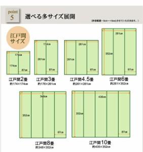 洗える PPカーペット 『バルカン』 グリーン 江戸間2畳(約174×174cm)(代引不可)【送料無料】