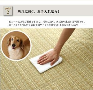 洗える PPカーペット 『バルカン』 グリーン 江戸間4.5畳(約261×261cm)(代引不可)【送料無料】