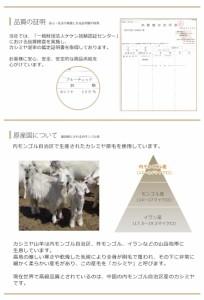 Filomo/フィローモ カシミヤ 100% マフラー ウインドゥペン チェック フリンジ デザイン メンズ 内モンゴル産 (No.02000189-mens-1)