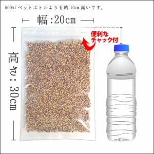クーポン対象▼ 国産もち麦 500g ダイシモチ 訳あり 簡易包装 大麦 送料無料 大麦 米 もちむぎ 自然の館 雑穀 雑穀米 もちむぎ